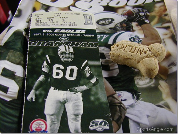 Remnants of the Vick Bowl