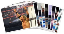 View WWE Royal Rumble 1-31-2010